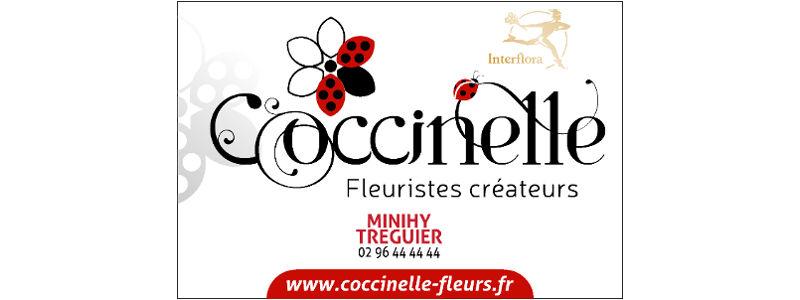 Coccinelle fleurs